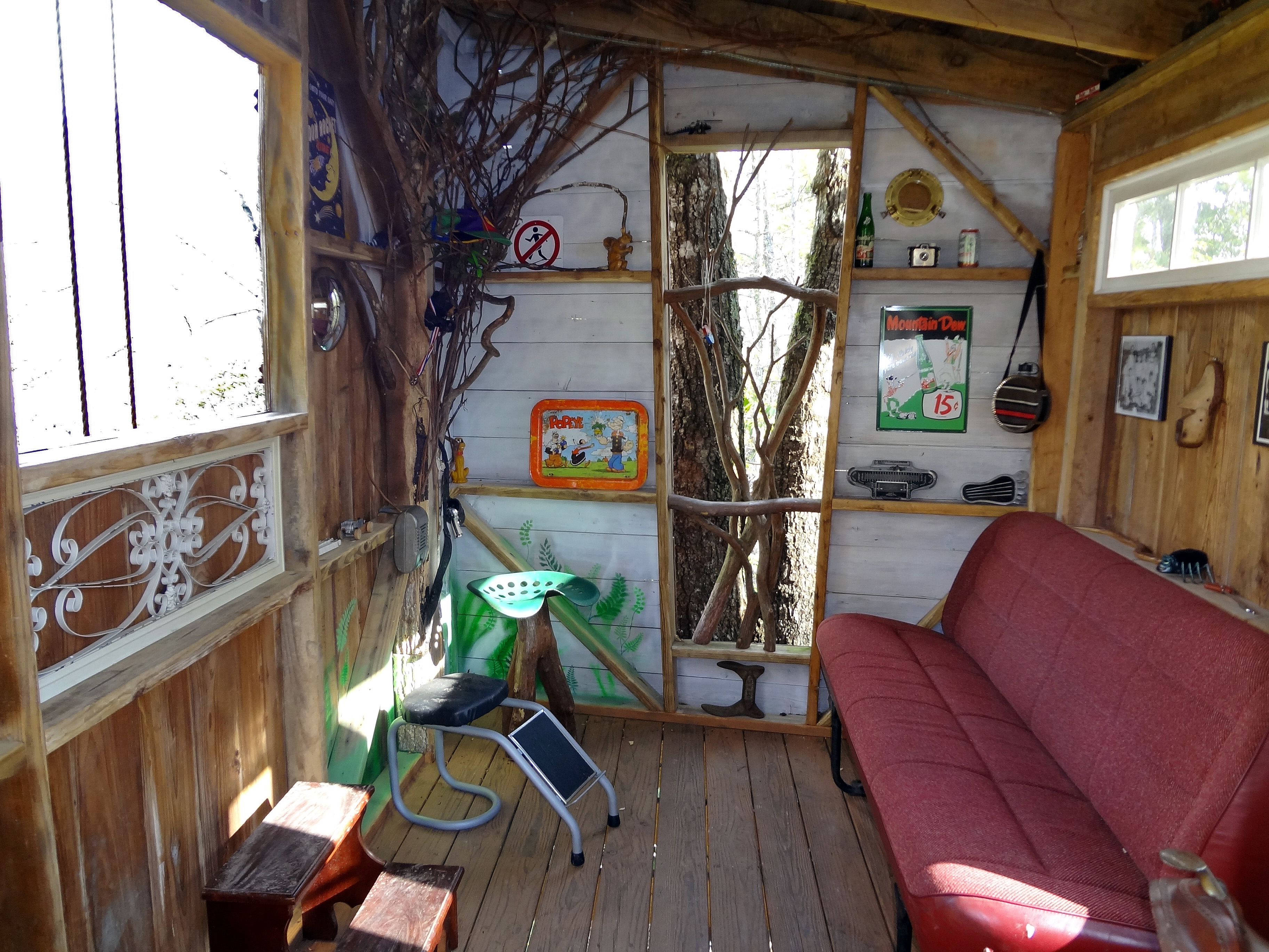 friendly experience nc for asheville tree black mountain pin near house rental cabins cabin eco elevated