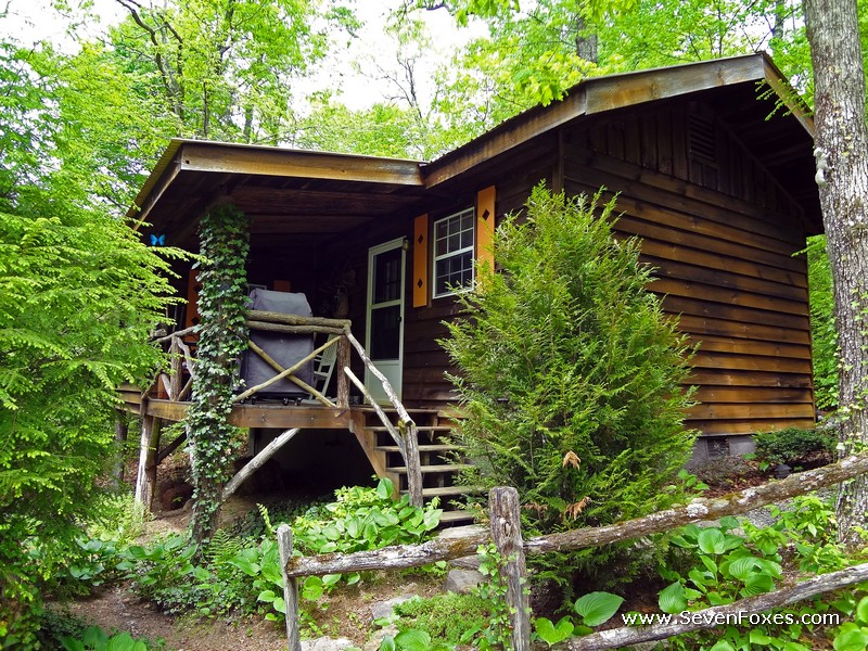 Squirrel Nest Cabin Rental Cabins At Seven Foxes Lake