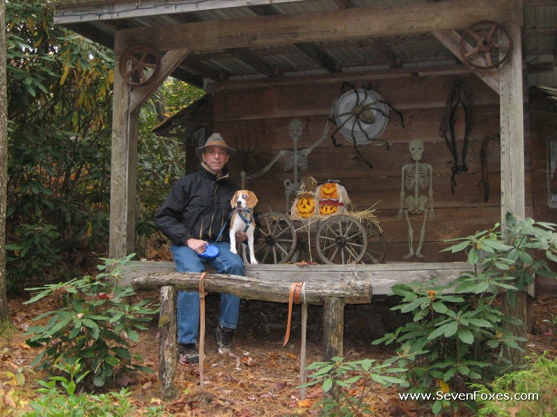 Guest Pet Pictures Cabins At Seven Foxes Lake Toxaway Nc