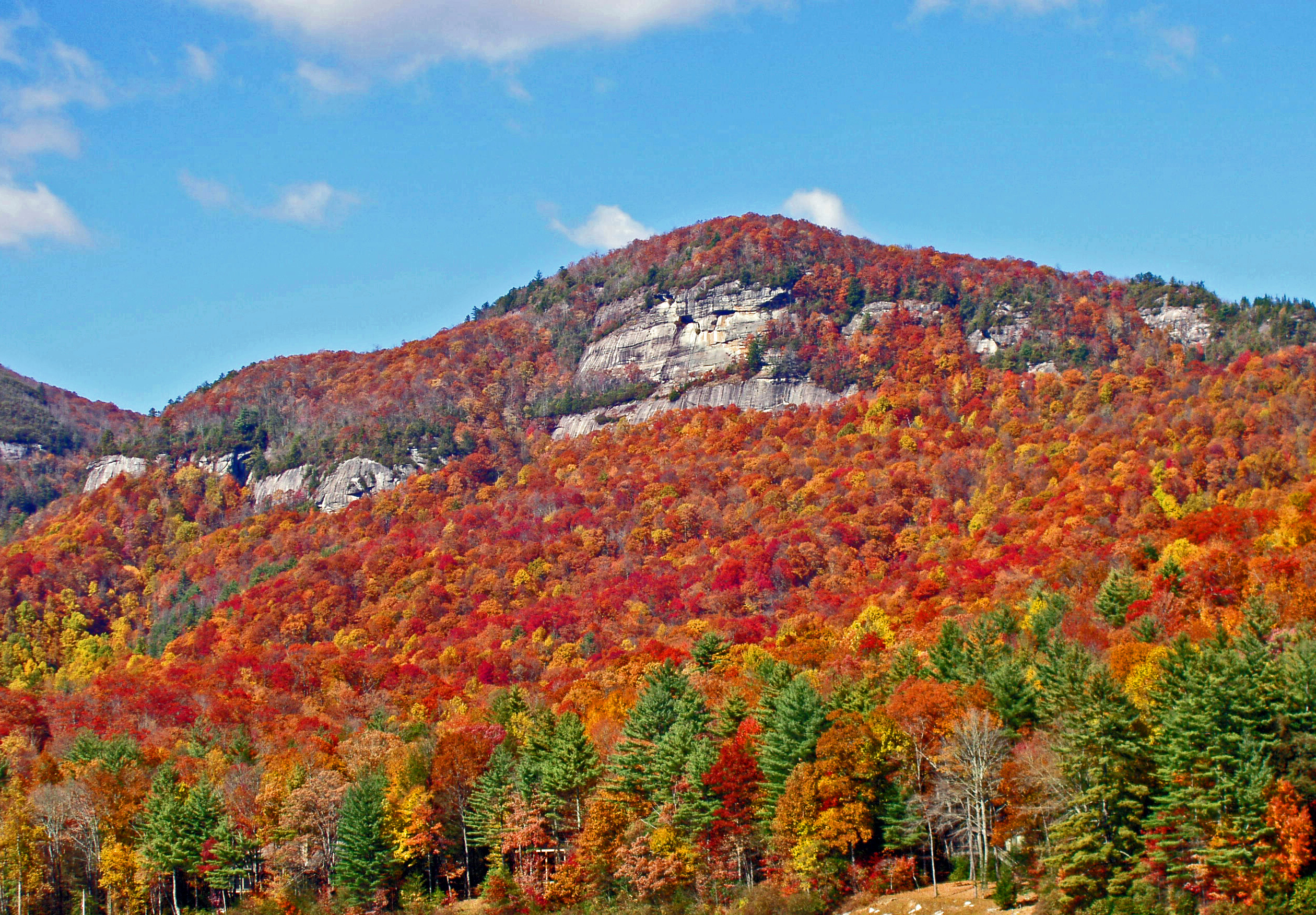 Experience Brilliant Fall Foliage In Lake Toxaway Nc